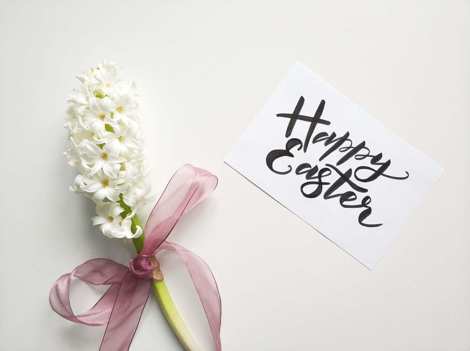 Поздравляем католиков всего мира с праздником Пасхи! - UniverPL